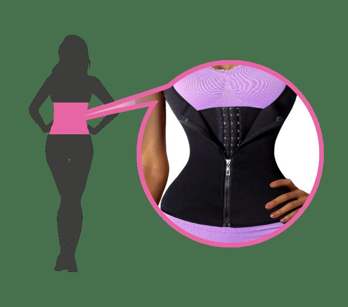 drag-anatomy-corsets